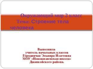 Выполнила учитель начальных классов Городничая Эльвира Иззетовна МОУ «Новожиз
