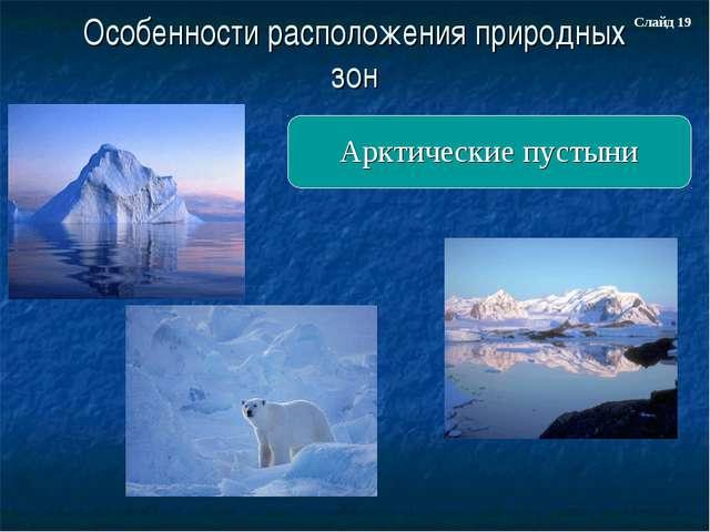 Особенности расположения природных зон Арктические пустыни Слайд 19