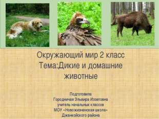 Окружающий мир 2 класс Тема:Дикие и домашние животные Подготовила Городничая