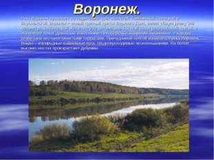 Воронеж. Река Воронеж протекает по территории трёх областей: Тамбовской, Лип