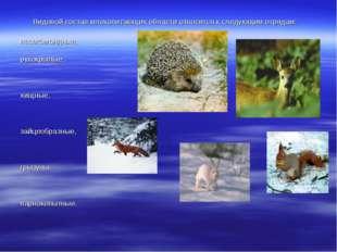 Видовой состав млекопитающих области относится к следующим отрядам: насеком
