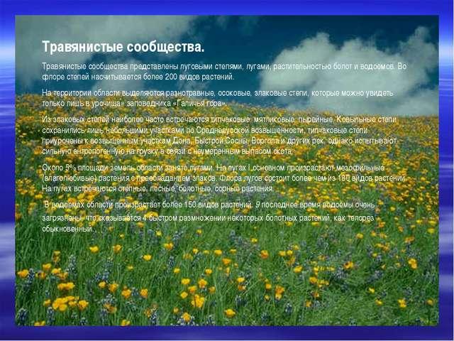 Травянистые сообщества. Травянистые сообщества представлены луговыми степями...