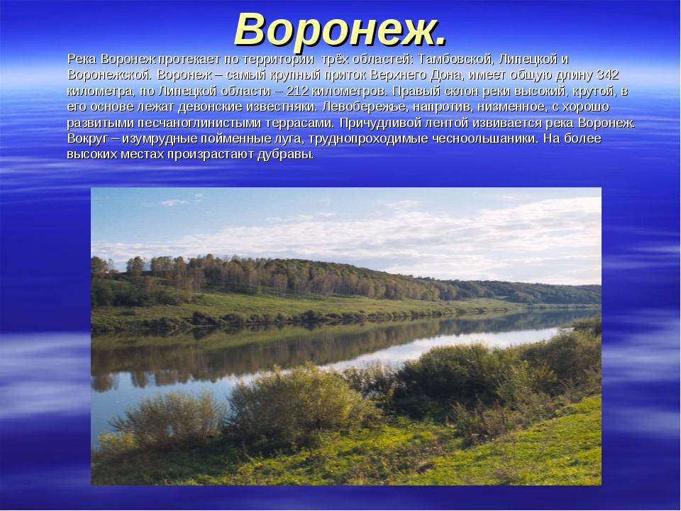 Воронеж. Река Воронеж протекает по территории трёх областей: Тамбовской, Лип...