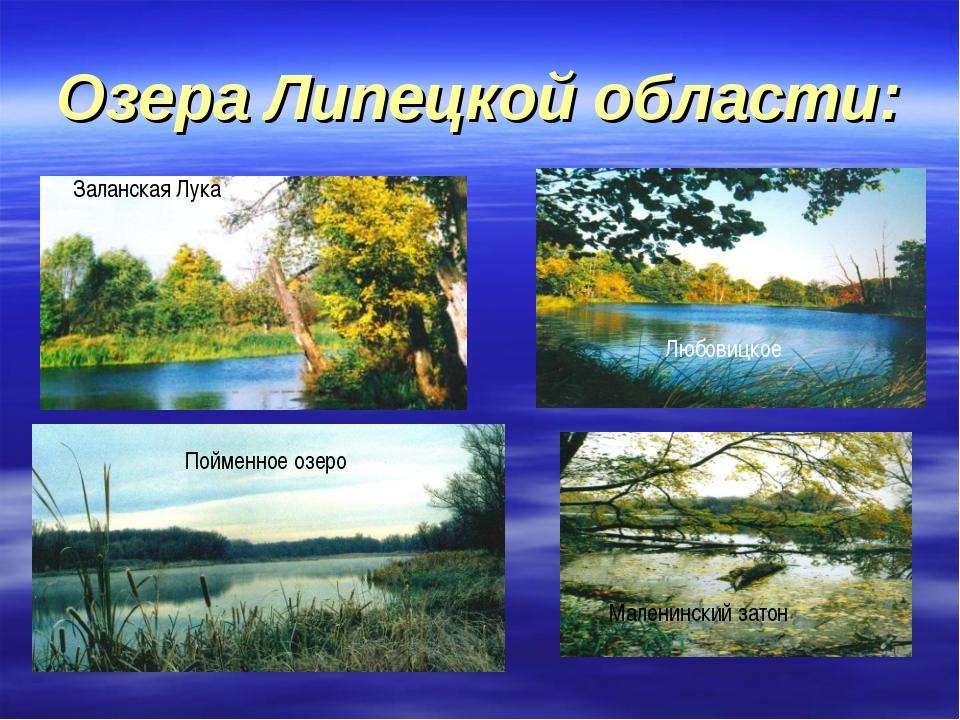Озера Липецкой области: Заланская Лука Пойменное озеро Любовицкое Маленинский...