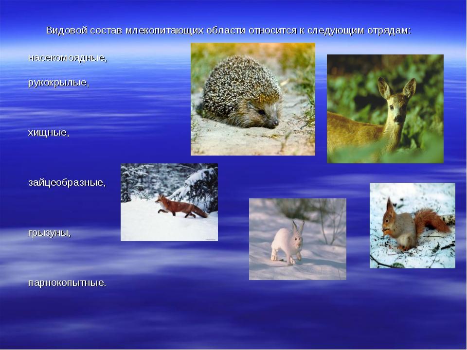 Видовой состав млекопитающих области относится к следующим отрядам: насеком...