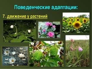 Поведенческие адаптации: 7. движение у растений