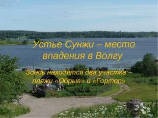 Устье Сунжи – место впадения в Волгу Здесь находятся два участка – пляжи «Об