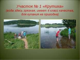 Участок № 1 «Крутиха» (вода здесь грязная, имеет 4 класс качества, для купан