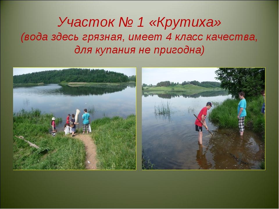 Участок № 1 «Крутиха» (вода здесь грязная, имеет 4 класс качества, для купан...