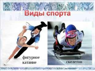 * * бобслей конькобежный спорт кёрлинг сноуборд хоккей фигурное катание скеле