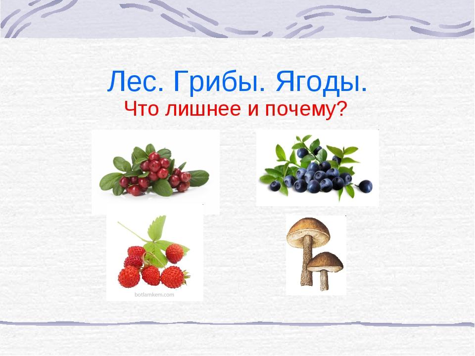 Лес. Грибы. Ягоды. Что лишнее и почему?