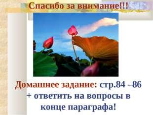 Спасибо за внимание!!! Домашнее задание: стр.84 –86 + ответить на вопросы в к