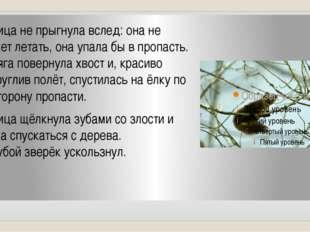 Куница не прыгнула вслед: она не может летать, она упала бы в пропасть. Летяг