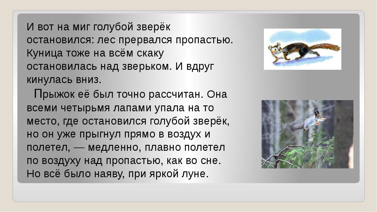 И вот на миг голубой зверёк остановился: лес прервался пропастью. Куница тоже...