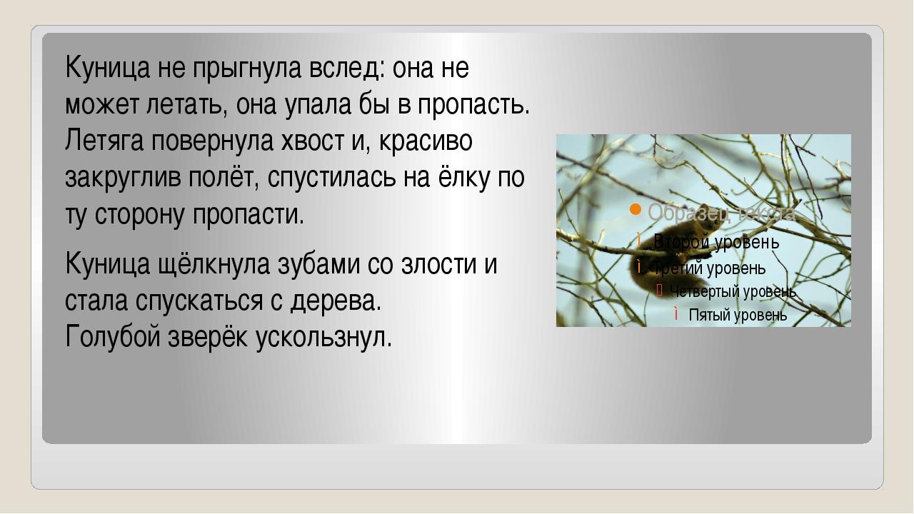 Куница не прыгнула вслед: она не может летать, она упала бы в пропасть. Летяг...