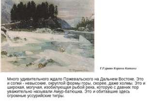 Много удивительного ждало Пржевальского на Дальнем Востоке. Это и сопки - не