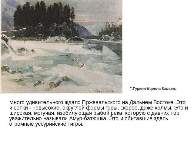 Много удивительного ждало Пржевальского на Дальнем Востоке. Это и сопки - не...