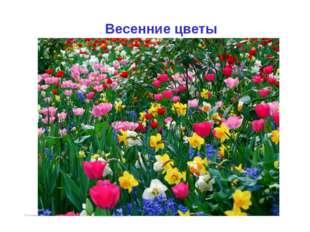 Развивающие игры, занятия, презентации на www.igraypodrastay.ru. Для просмотр