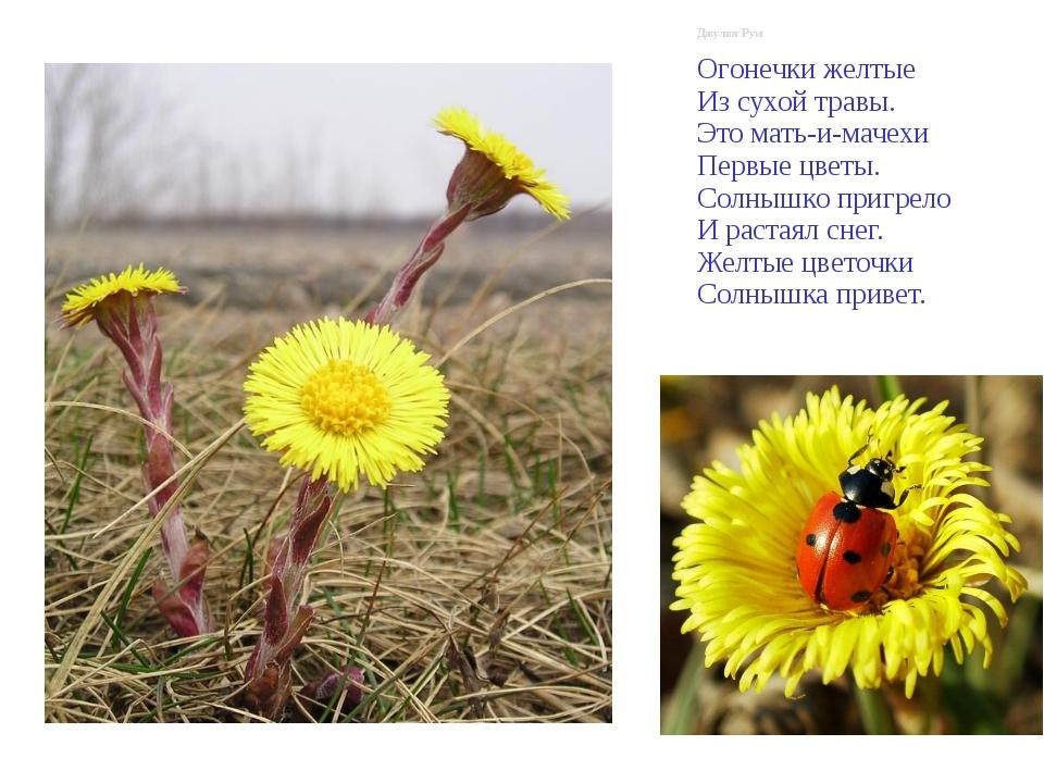 Джулия Рум Огонечки желтые Из сухой травы. Это мать-и-мачехи Первые цветы. С...