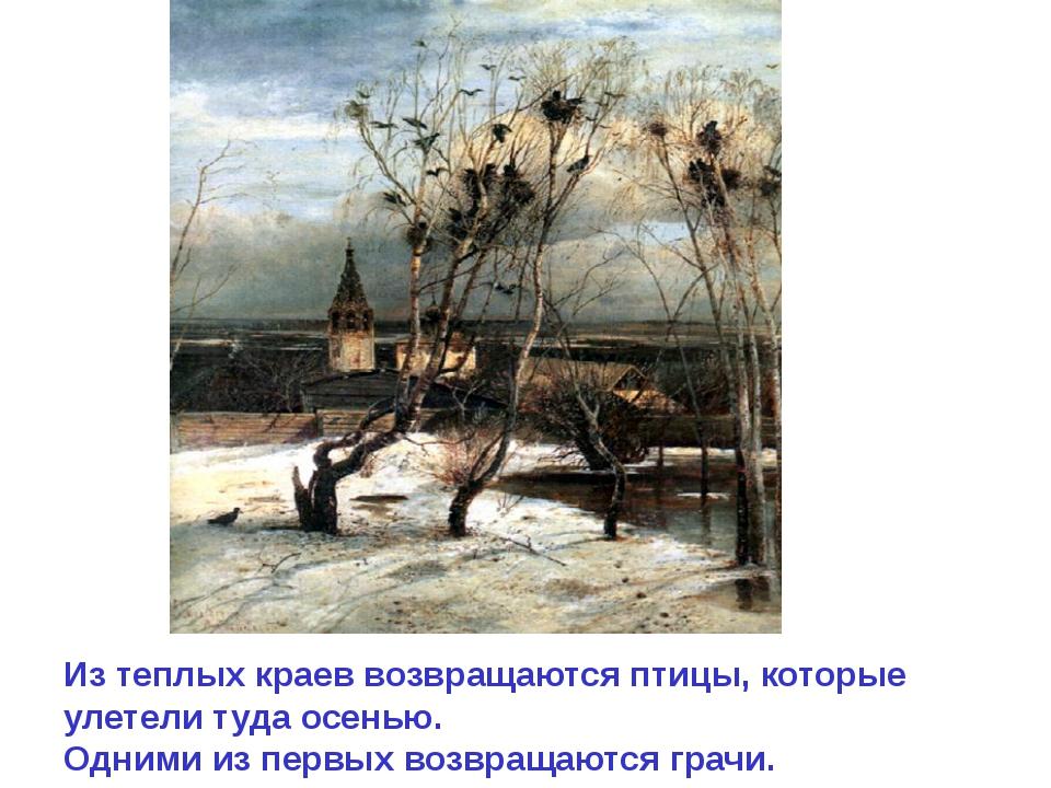 Из теплых краев возвращаются птицы, которые улетели туда осенью. Одними из пе...