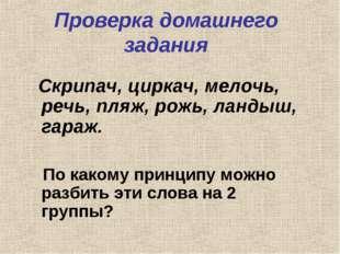 Проверка домашнего задания Скрипач, циркач, мелочь, речь, пляж, рожь, ландыш,