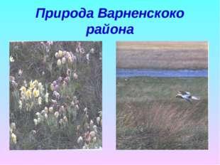 Природа Варненскоко района
