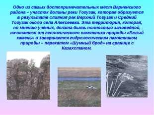 Одно из самых достопримечательных мест Варненского района – участок долины ре