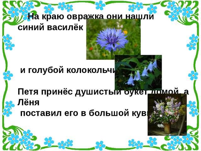 На краю овражка они нашли синий василёк и голубой колокольчик. Петя принёс д...