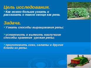 Цель исследования. Как можно больше узнать и рассказать о таком овоще как реп