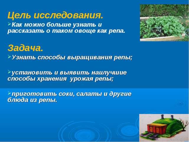 Цель исследования. Как можно больше узнать и рассказать о таком овоще как реп...