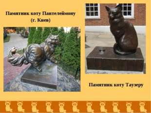 Памятник коту Пантелеймону (г. Киев) Памятник коту Таузеру