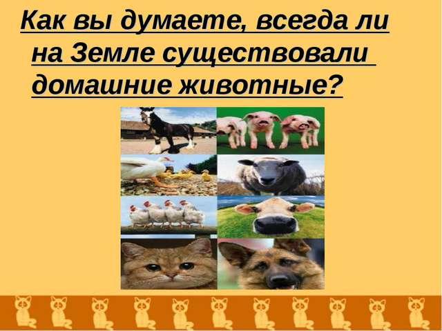Как вы думаете, всегда ли на Земле существовали домашние животные?