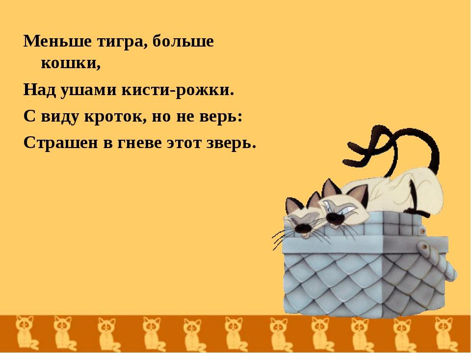 Меньше тигра, больше кошки, Над ушами кисти-рожки. С виду кроток, но не верь:...