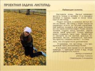 Падающее золото. Наступила осень. Листья начинают желтеть только в октябре. А