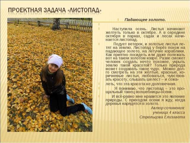 Падающее золото. Наступила осень. Листья начинают желтеть только в октябре. А...