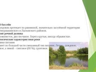 Речной бассейн Река Сундовик протекает по равнинной, значительно заселённой