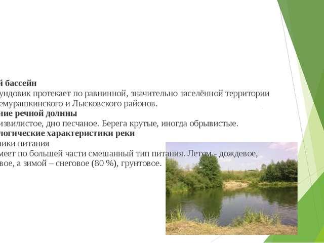 Речной бассейн Река Сундовик протекает по равнинной, значительно заселённой...