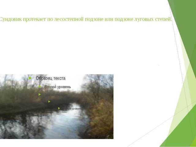 Река Сундовик протекает по лесостепной подзоне или подзоне луговых степей.