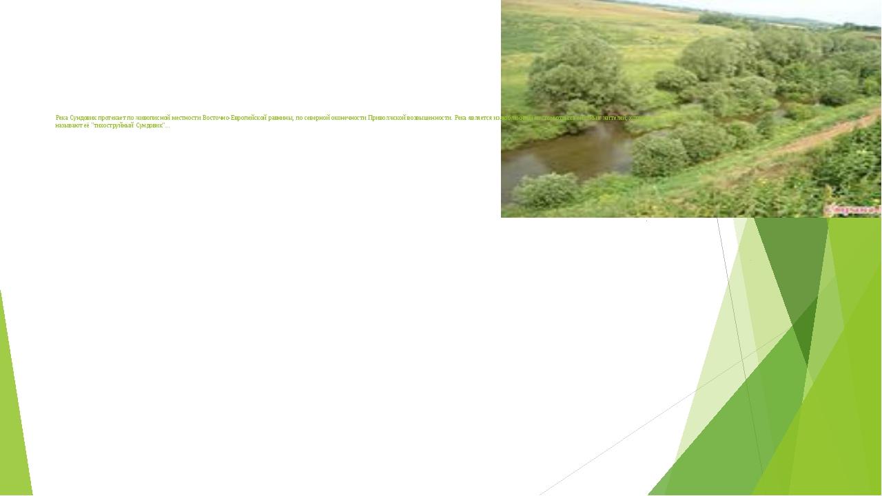 Река Сундовик протекает по живописной местности Восточно-Европейской равнины...