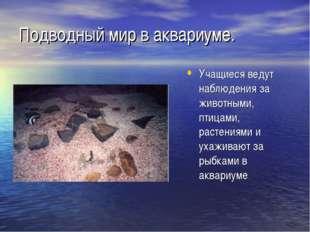 Подводный мир в аквариуме. Учащиеся ведут наблюдения за животными, птицами, р