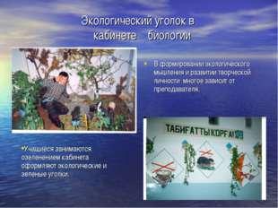 Экологический уголок в кабинете биологии В формировании экологического мышлен