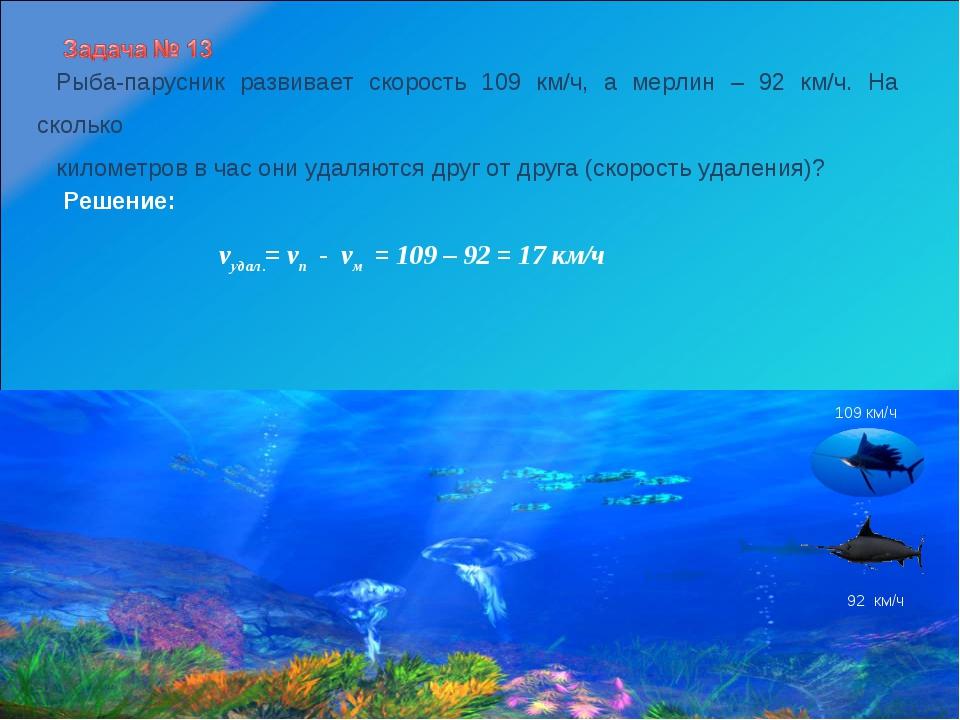 Рыба-парусник развивает скорость 109 км/ч, а мерлин – 92 км/ч. На сколько кил...