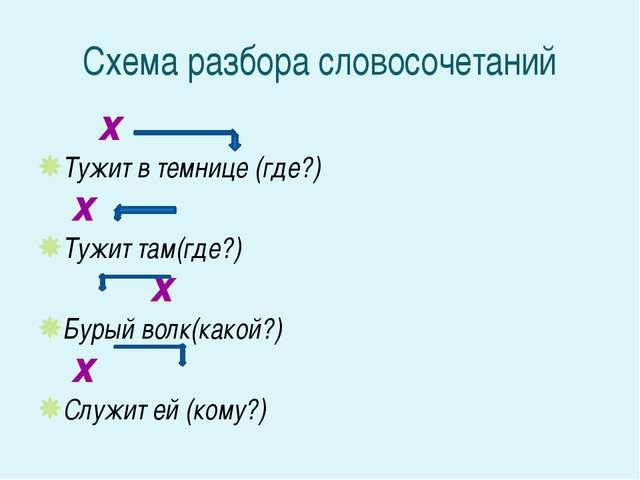 Схема разбора словосочетаний х Тужит в темнице (где?) х Тужит там(где?) х Бур...
