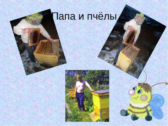 Папа и пчёлы