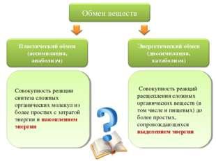 Совокупность реакций расщепления сложных органических веществ (в том числе и