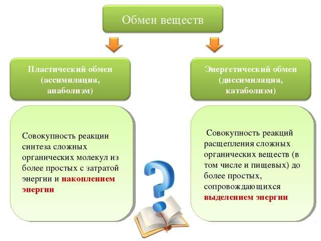 Совокупность реакций расщепления сложных органических веществ (в том числе и...