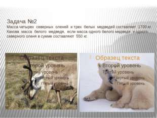 Задача №2 Масса четырех северных оленей и трех белых медведей составляет 170
