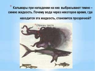 Кальмары при нападении на них выбрасывают темно – синею жидкость. Почему вода