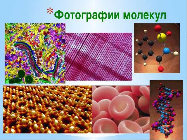 Фотографии молекул