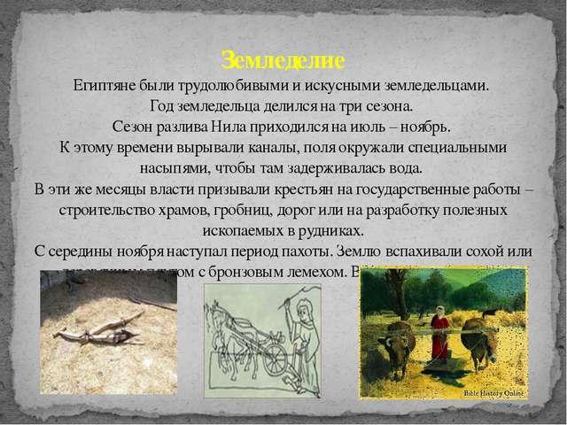 Земледелие Египтяне были трудолюбивыми и искусными земледельцами. Год земледе...